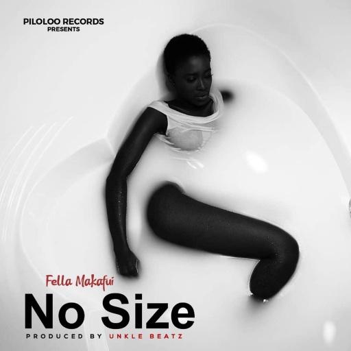 Fella Makafui No Size Mp3 Mp4 Download Video