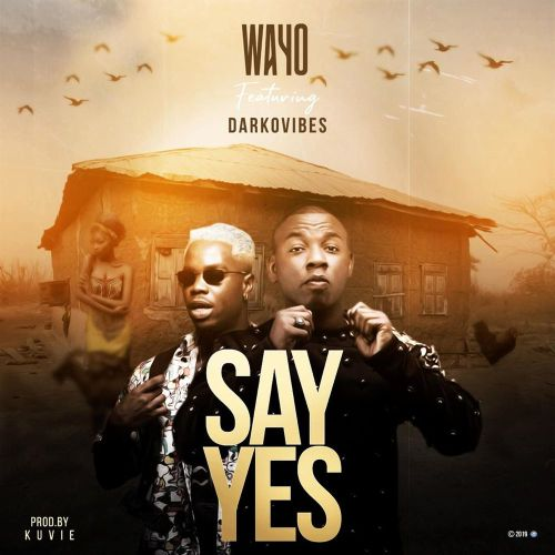 Wayo Ft Darkovibes Say Yes Mp3 Download