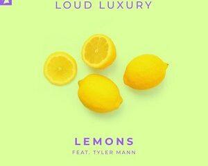 Loud Luxury Ft Tyler Mann Lemons Mp3 Download