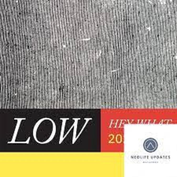 Low HEY WHAT Zip Download